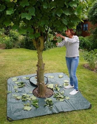 Multi-Plane Profi für Gartenarbeiten