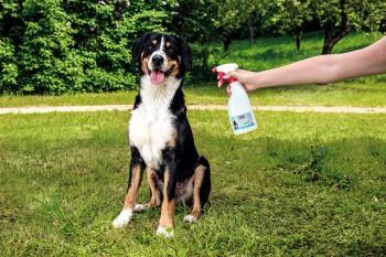 BALLISTOL Stichfrei Animal Pumpspray, 750ml - Zeckenabwehr & Mückenschutz