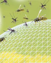 Comprimés de remplacement pour insectifuge Pest Reject Bug Shield