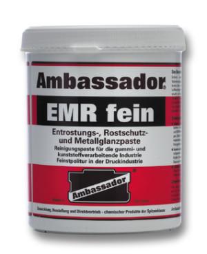 Ambassador EMR fine