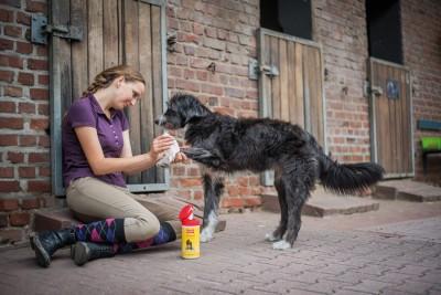 BALLISTOL Animal Care Oil, 100ml