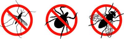 BALLISTOL Stichfrei Pumpspray, 100ml - Zeckenabwehr & Mückenschutz